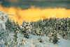 Von der Sonne angestrahlte Wolken - Utvikfjell - Norwegen