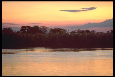 Abendstimmung am Shire River - Malawi