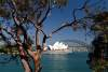 Sydney Opera House & Harbour Bridge - Sydney